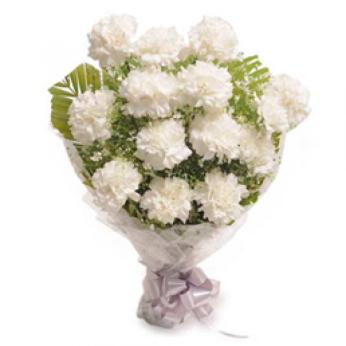 White Carnations-800x800